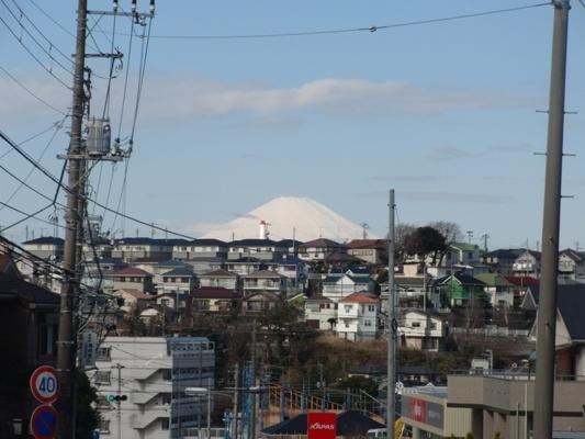 009@お散歩.jpg