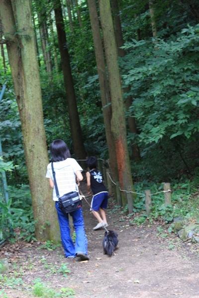 261@公園散歩.jpg