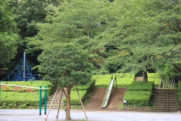 335@公園散歩.jpg