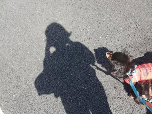 CIMG5854@お散歩.jpg