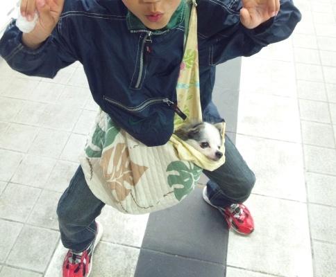 DSC_0506@えびな.jpg