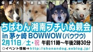 chigasaki_20120211_320x180.jpg